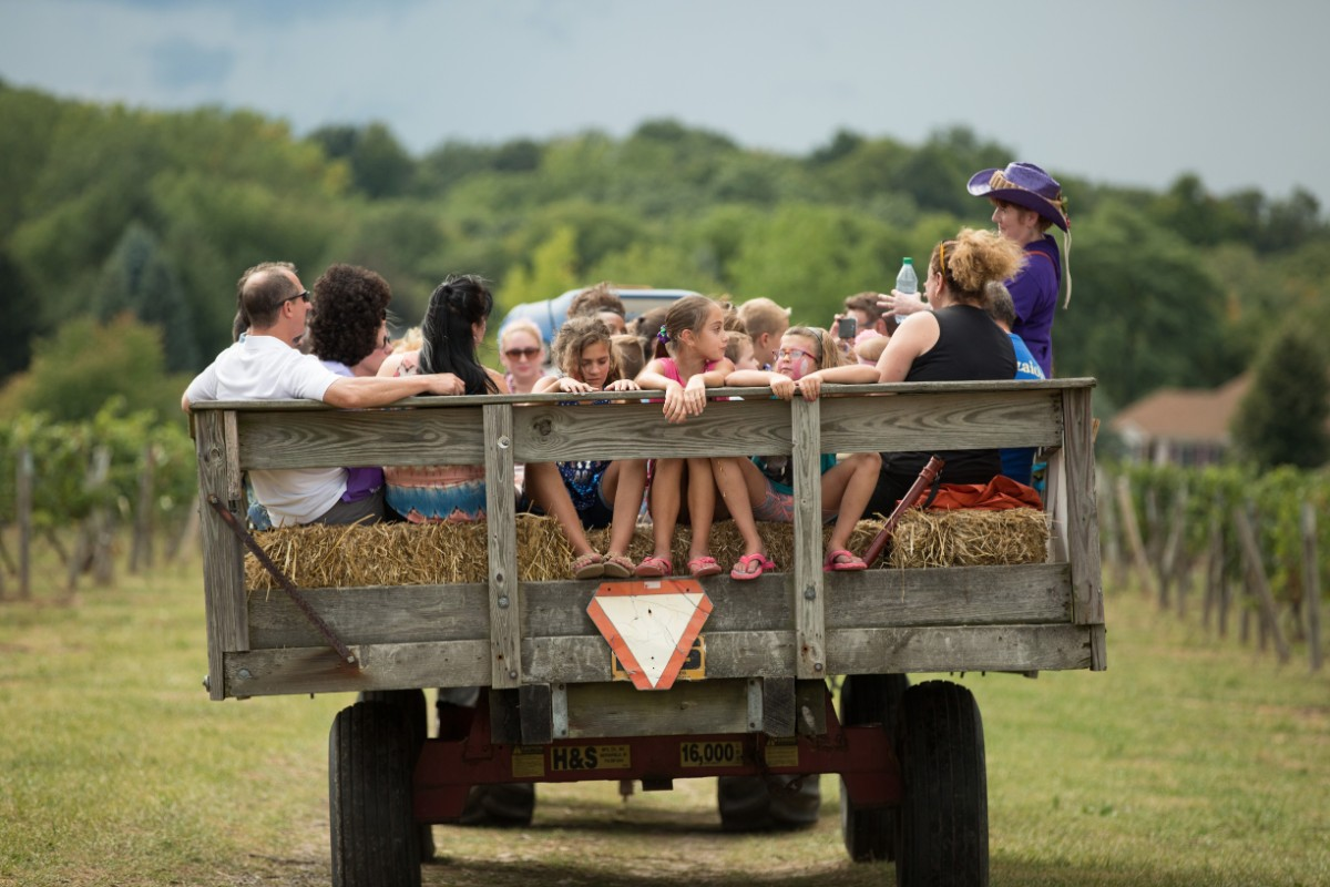 Vineyard Hayride