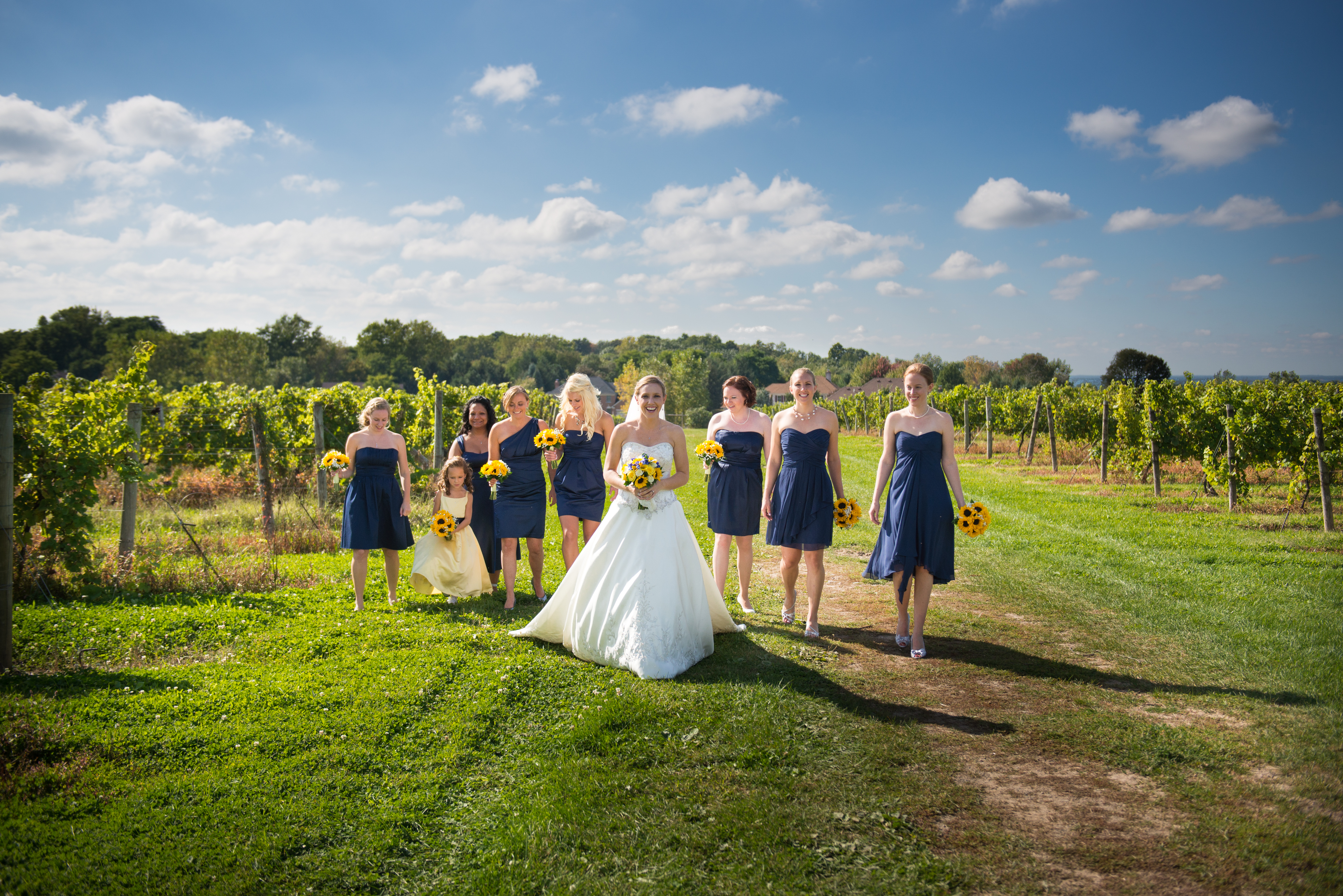 Bridal Party in the Vineyards, Wedding Receptions and Ceremonies at Casa Larga Vineyards