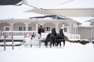 Horse and carriage, Wedding Ceremonies and Receptions at Casa Larga Vineyards