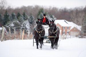 Casa Larga Vineyards winter winery weddings