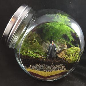 Wizard Terrarium Workshop