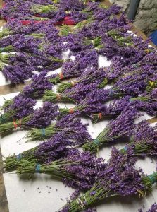 Various Lavender products from Lavender View Farms! https://lavenderview.wordpress.com/