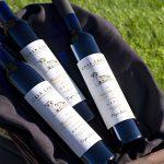 2015 Fiori Vidal Blanc Ice Wine at Casa Larga Vineyards